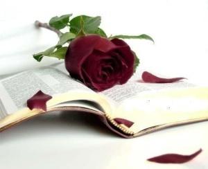Carte-trandafir